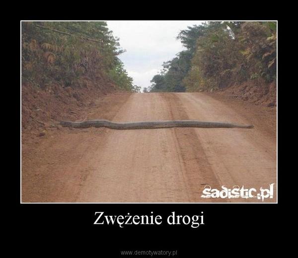 Zwężenie drogi –