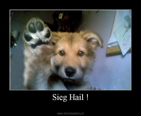 Sieg Hail ! –
