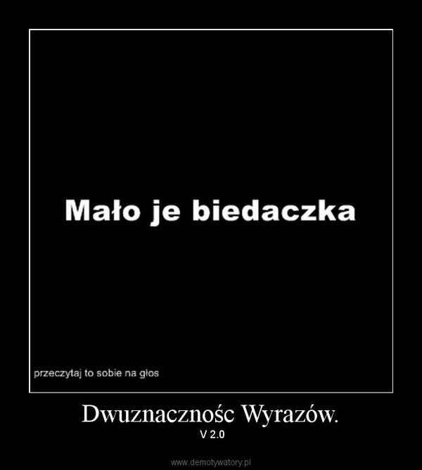Dwuznacznośc Wyrazów. –  V 2.0