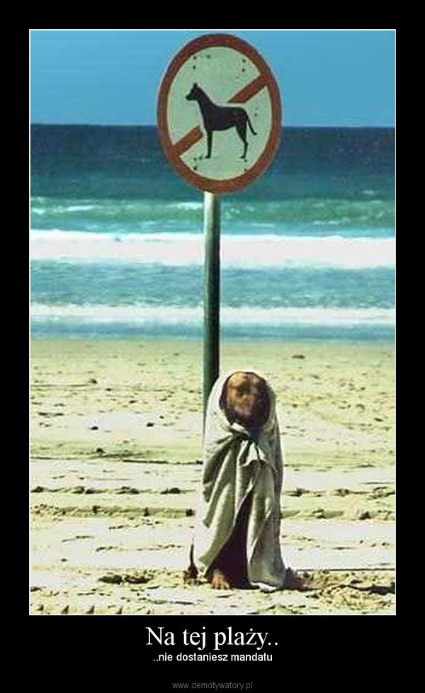 Na tej plaży.. – ..nie dostaniesz mandatu