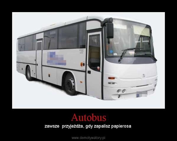 Autobus – zawsze  przyjeżdża, gdy zapalisz papierosa
