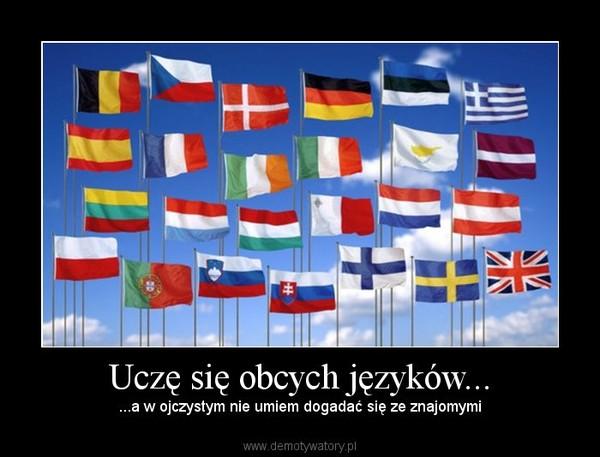 Uczę się obcych języków... – ...a w ojczystym nie umiem dogadać się ze znajomymi