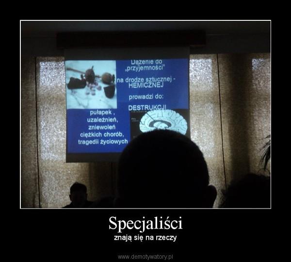 Specjaliści – znają się na rzeczy