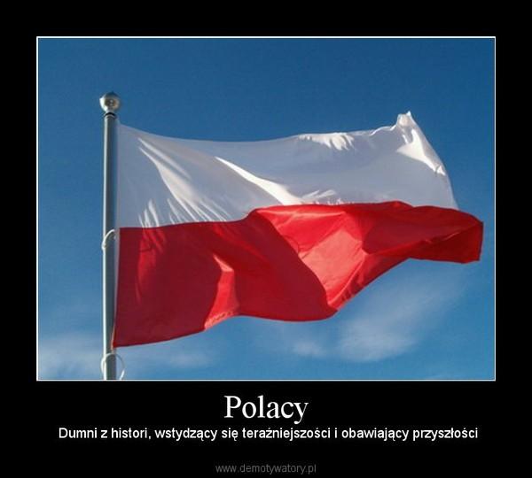 Polacy – Dumni z histori, wstydzący się teraźniejszości i obawiający przyszłości