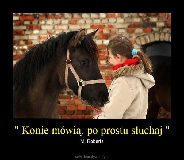 """"""" Konie mówią, po prostu słuchaj """" – M. Roberts"""