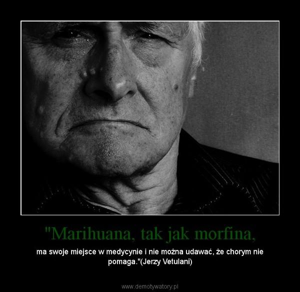 """""""Marihuana, tak jak morfina, – ma swoje miejsce w medycynie i nie można udawać, że chorym nie pomaga.""""(Jerzy Vetulani)"""