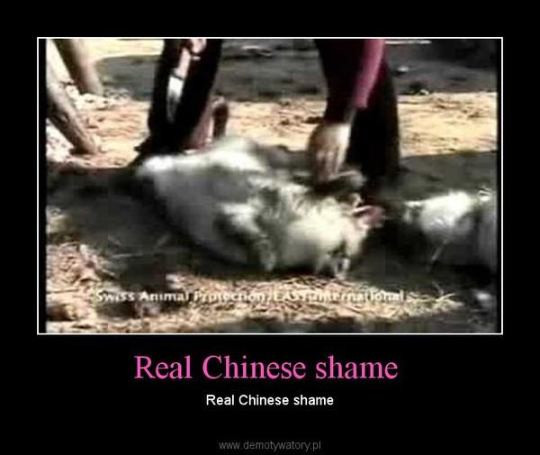 Real Chinese shame – Real Chinese shame
