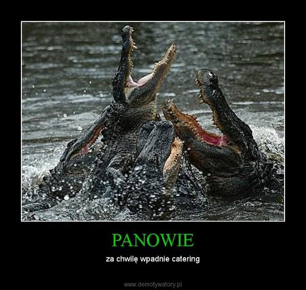 PANOWIE – za chwilę wpadnie catering