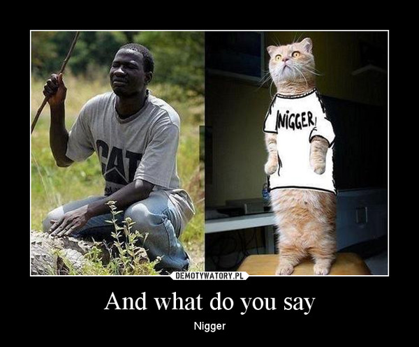 And what do you say – Nigger