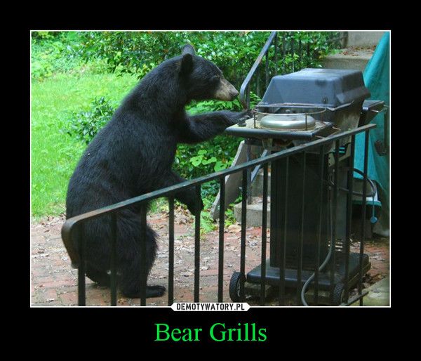 Bear Grills –