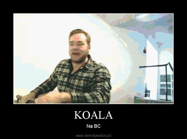 KOALA – Na BC