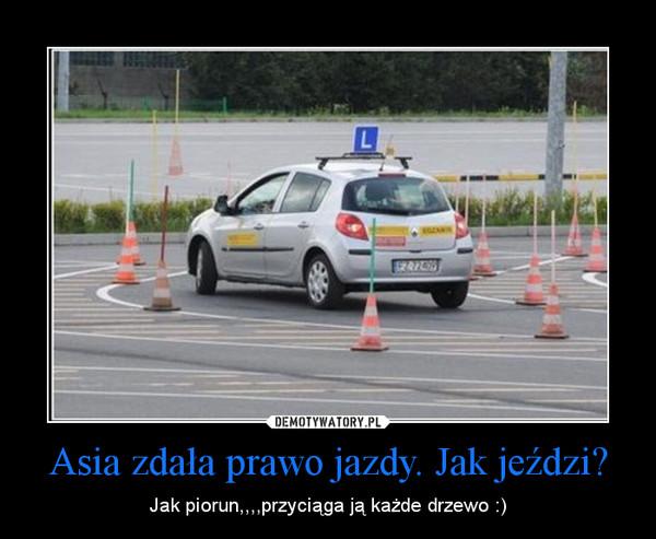 Asia zdała prawo jazdy. Jak jeździ? – Jak piorun,,,,przyciąga ją każde drzewo :)