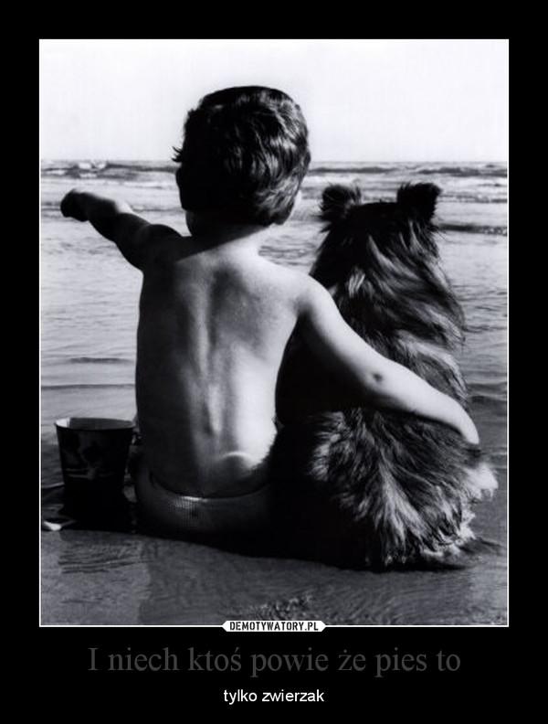 I niech ktoś powie że pies to – tylko zwierzak