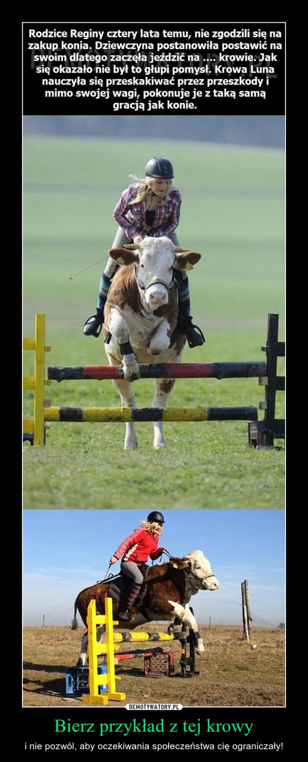 Bierz przykład z tej krowy – i nie pozwól, aby oczekiwania społeczeństwa cię ograniczały!