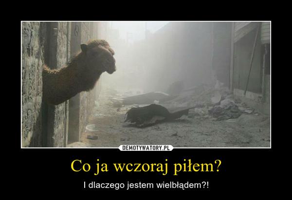 Co ja wczoraj piłem? – I dlaczego jestem wielbłądem?!