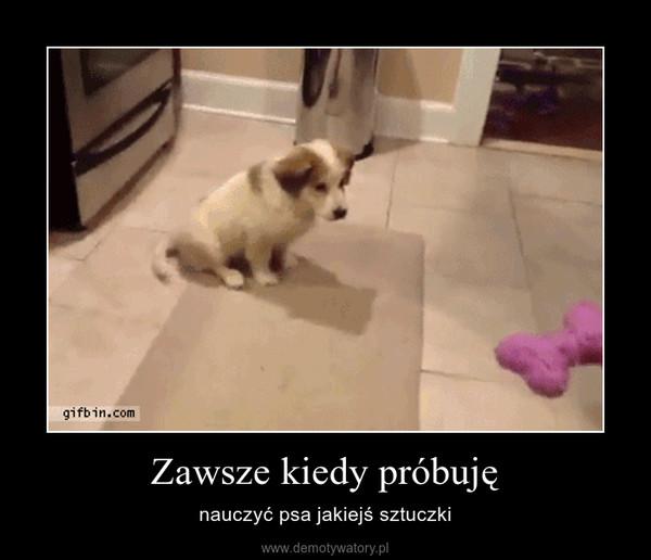 Zawsze kiedy próbuję – nauczyć psa jakiejś sztuczki