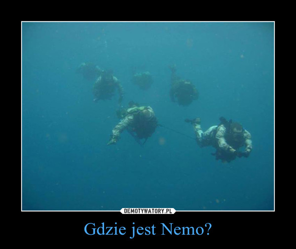 Gdzie jest Nemo? –