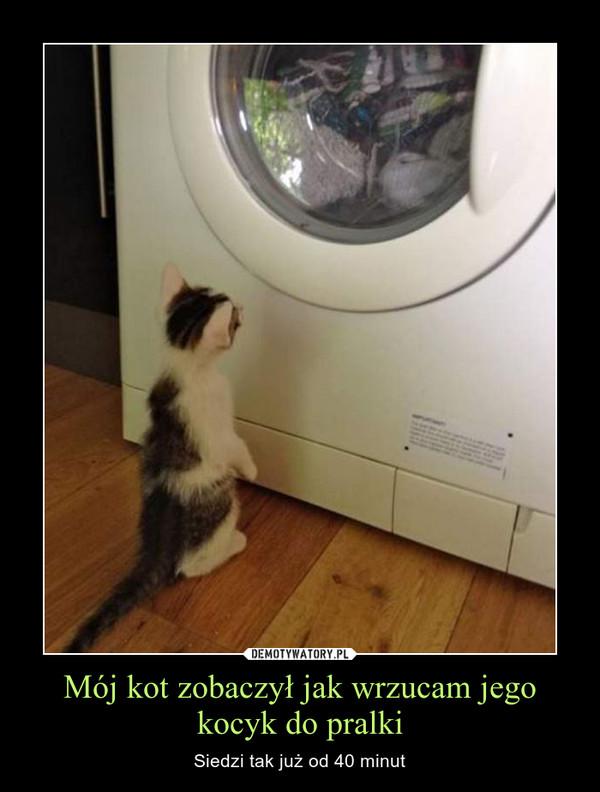 Mój kot zobaczył jak wrzucam jego kocyk do pralki – Siedzi tak już od 40 minut