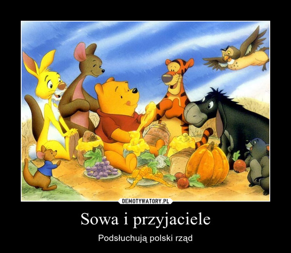 Sowa i przyjaciele – Podsłuchują polski rząd