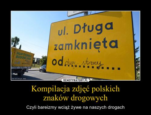 Kompilacja zdjęć polskich znaków drogowych