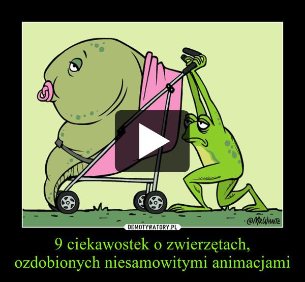9 ciekawostek o zwierzętach, ozdobionych niesamowitymi animacjami –
