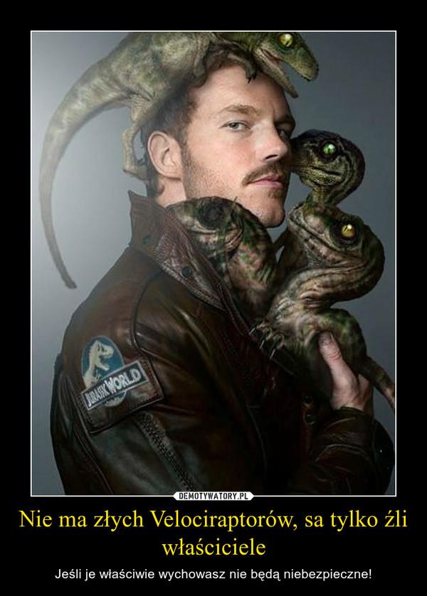 Nie ma złych Velociraptorów, sa tylko źli właściciele – Jeśli je właściwie wychowasz nie będą niebezpieczne!