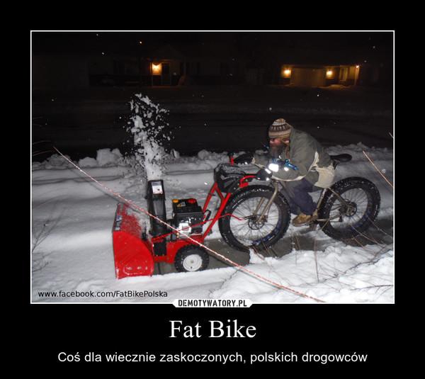 Fat Bike – Coś dla wiecznie zaskoczonych, polskich drogowców