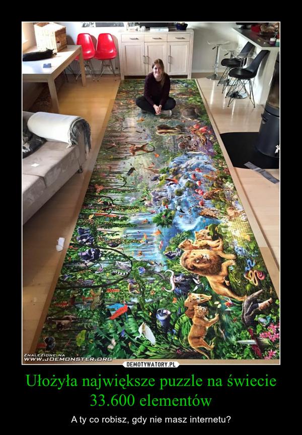 Ułożyła największe puzzle na świecie33.600 elementów – A ty co robisz, gdy nie masz internetu?