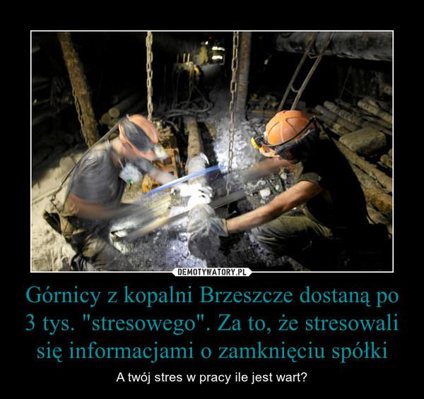 """Górnicy z kopalni Brzeszcze dostaną po 3 tys. """"stresowego"""". Za to, że stresowali się informacjami o zamknięciu spółki – A twój stres w pracy ile jest wart?"""