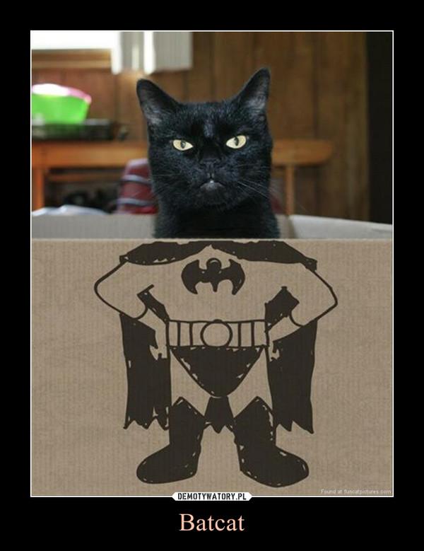 Batcat –