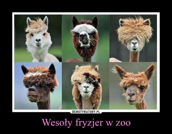 Wesoły fryzjer w zoo –