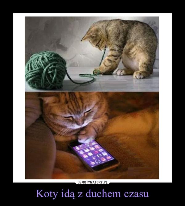 Koty idą z duchem czasu –