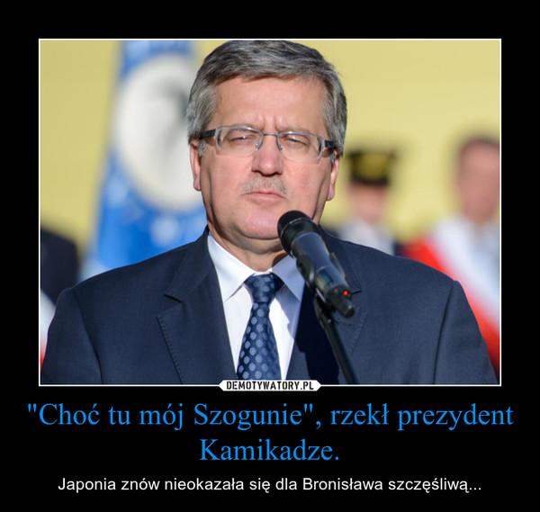 """""""Choć tu mój Szogunie"""", rzekł prezydent Kamikadze. – Japonia znów nieokazała się dla Bronisława szczęśliwą..."""