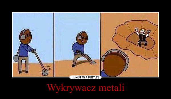 Wykrywacz metali –