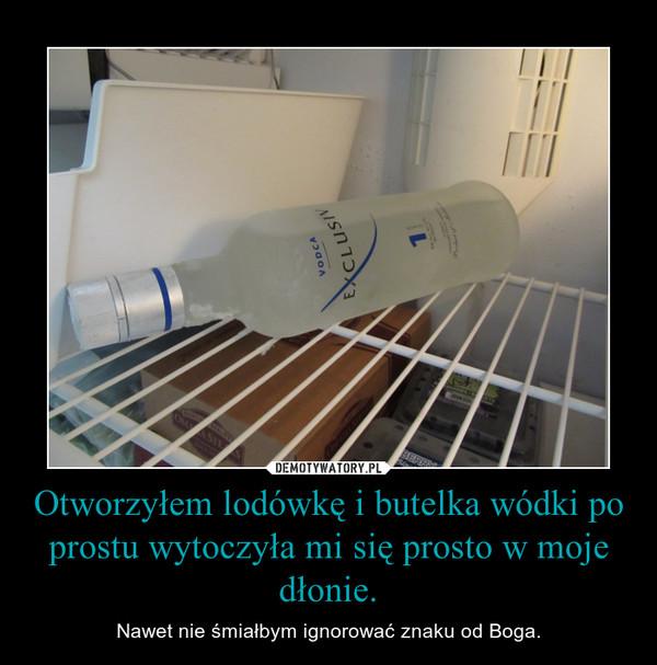 Otworzyłem lodówkę i butelka wódki po prostu wytoczyła mi się prosto w moje dłonie. – Nawet nie śmiałbym ignorować znaku od Boga.
