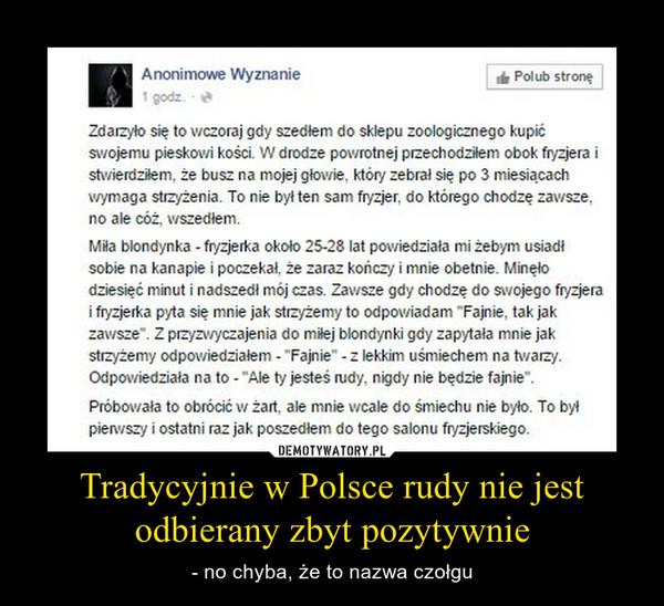 Tradycyjnie w Polsce rudy nie jest odbierany zbyt pozytywnie – - no chyba, że to nazwa czołgu