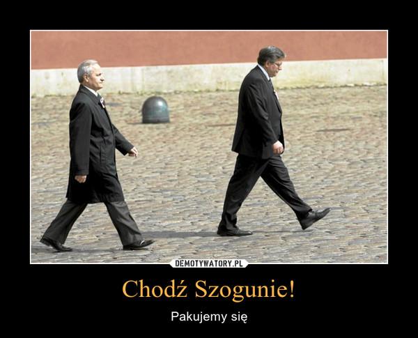 Chodź Szogunie! – Pakujemy się