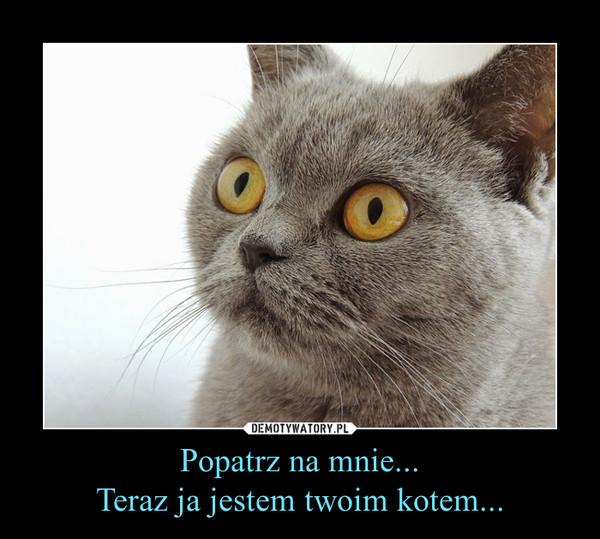 Popatrz na mnie...Teraz ja jestem twoim kotem... –