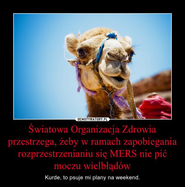 Światowa Organizacja Zdrowia przestrzega, żeby w ramach zapobiegania rozprzestrzenianiu się MERS nie pić moczu wielbłądów – Kurde, to psuje mi plany na weekend.