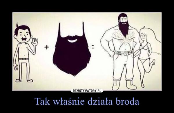 Tak właśnie działa broda –
