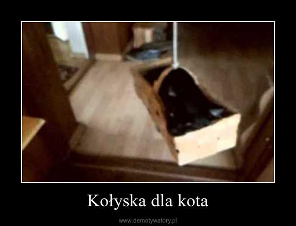 Kołyska dla kota –