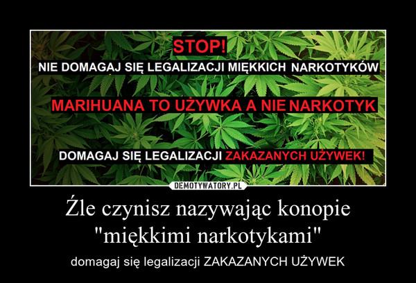 """Źle czynisz nazywając konopie """"miękkimi narkotykami"""" – domagaj się legalizacji ZAKAZANYCH UŻYWEK"""