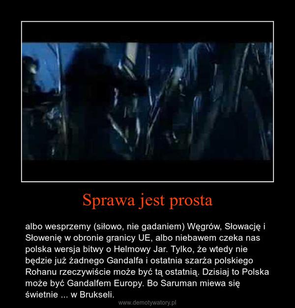 Sprawa jest prosta – albo wesprzemy (siłowo, nie gadaniem) Węgrów, Słowację i Słowenię w obronie granicy UE, albo niebawem czeka nas polska wersja bitwy o Helmowy Jar. Tylko, że wtedy nie będzie już żadnego Gandalfa i ostatnia szarża polskiego Rohanu rzeczywiście może być tą ostatnią. Dzisiaj to Polska może być Gandalfem Europy. Bo Saruman miewa się świetnie ... w Brukseli.