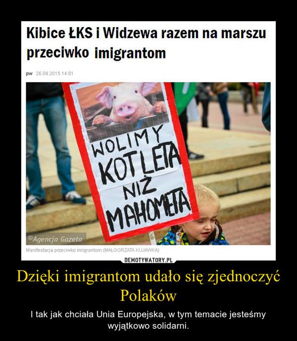 Dzięki imigrantom udało się zjednoczyć Polaków – I tak jak chciała Unia Europejska, w tym temacie jesteśmy wyjątkowo solidarni.