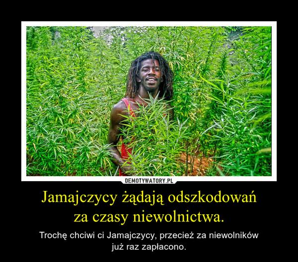 Jamajczycy żądają odszkodowańza czasy niewolnictwa. – Trochę chciwi ci Jamajczycy, przecież za niewolnikówjuż raz zapłacono.