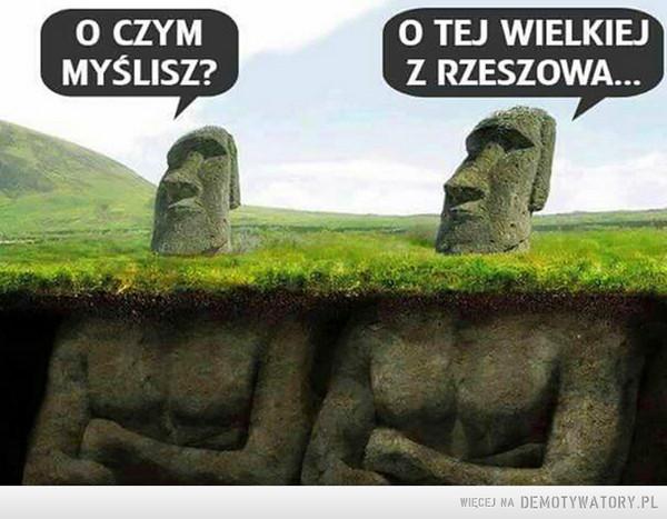 Zagadki pomników –