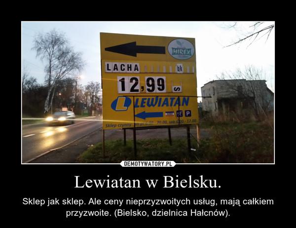 Lewiatan w Bielsku. – Sklep jak sklep. Ale ceny nieprzyzwoitych usług, mają całkiem przyzwoite. (Bielsko, dzielnica Hałcnów).