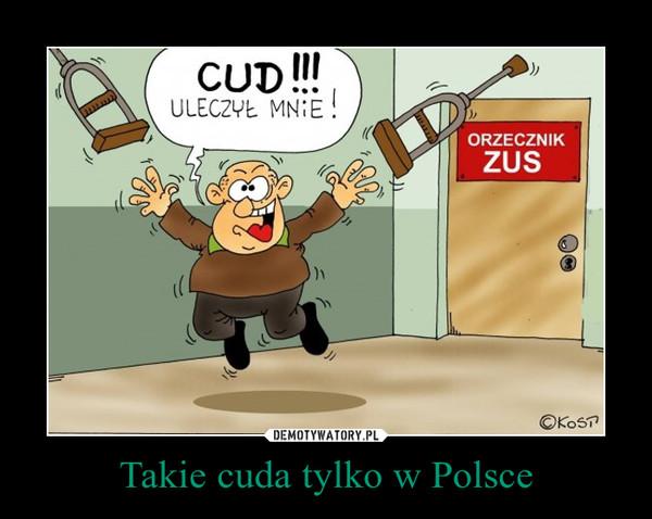 Takie cuda tylko w Polsce –