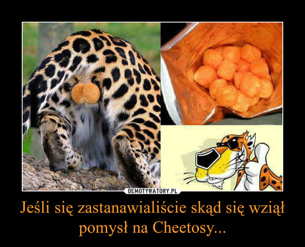 Jeśli się zastanawialiście skąd się wziął pomysł na Cheetosy... –