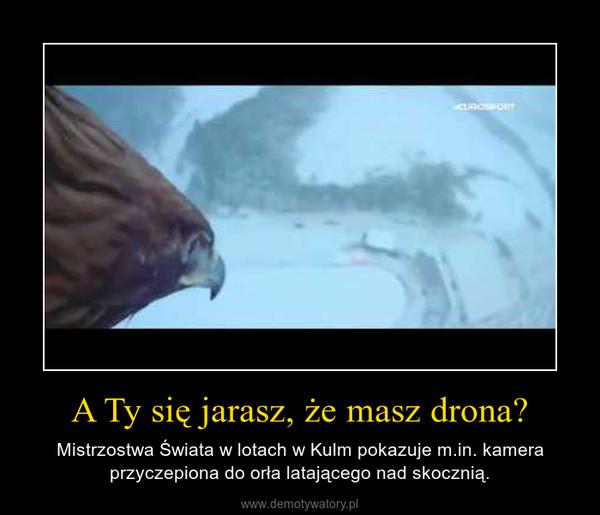 A Ty się jarasz, że masz drona? – Mistrzostwa Świata w lotach w Kulm pokazuje m.in. kamera przyczepiona do orła latającego nad skocznią.